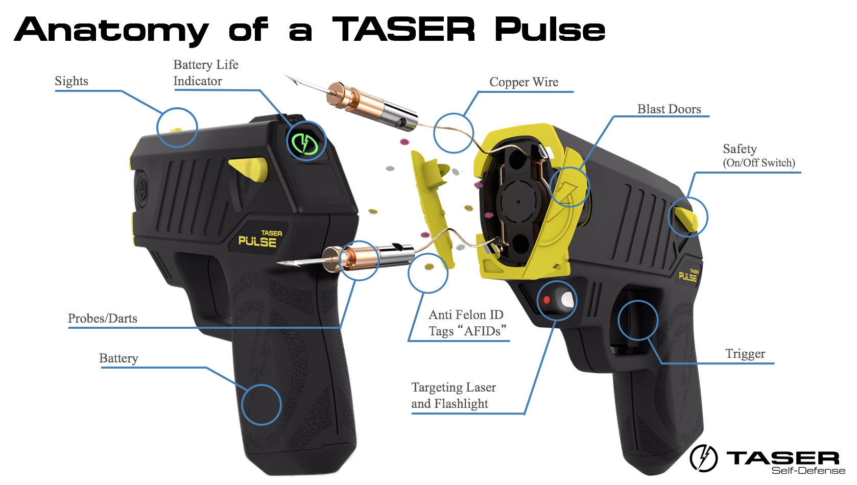 Anatomy of TASER Pulse